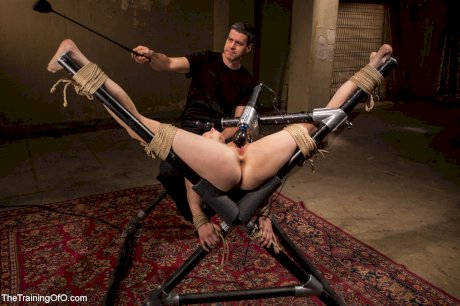 The Training Of O Penny Pax, Rob Blu
